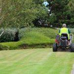 commercial landscape maintenance by Shamrock Landscape Co, Benicia