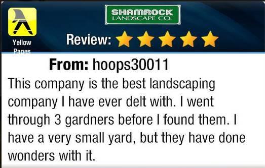 testimonial hoops30011