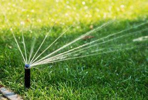 watering a lawn | Shamrock Landscape Benicia
