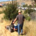fire safety mowing, Shamrock Landscape Co, Benicia CA