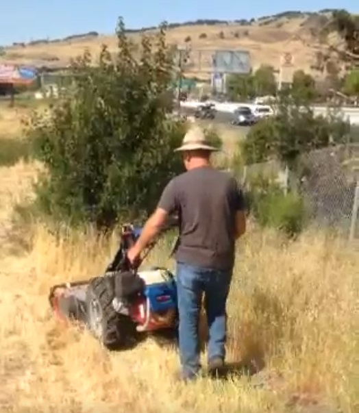 fire safety mowing, Shamrock Landscape Co, Benicia CA