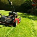 lawn mowing service, Shamrock Landscape, Benicia, Vallejo, American Canyon