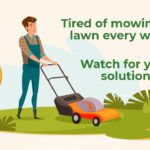 lawn care solution